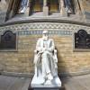 natural-history-museum-charles-darwin